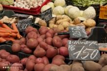 Root Vegetables, Farmer's Market, Mosoni Piac, Mosonmagyaróvár, Hungary