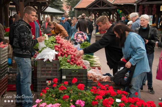 Farmer's Market, Mosoni Pia, Mosonmagyaróvár, Hungary
