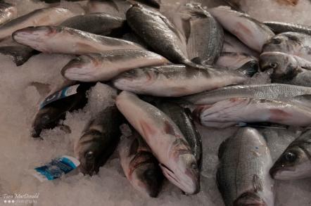 Fresh fish for sale at the Benediktiner Markt – Klagenfurt, Austria