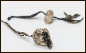 otzi birch